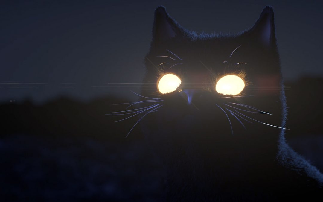 Black Hole Cat Studio Logo Animation